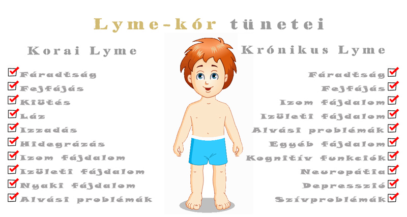 lyme-kor-tunetek-nagy
